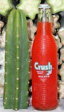 "San Pedro Echinopsis Trichocereus Pachanoi Cactus 1 9"" Tip Cutting Organic"