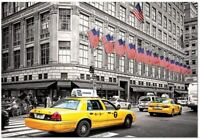 Fifth Avenue, New York Puzzle  By Educa 1000 Piece Puzzle