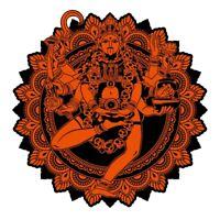 THE GRITNESS ACOUSTRONICS - MAHAKALI   VINYL LP NEU