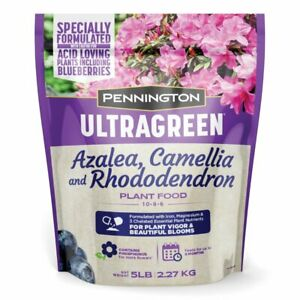 Pennington Ultragreen Azalea, Camellia & Rhododendron Fertilizer 5Lb