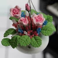 Pflanze Rose Rosa Blume Miniatur 1:12 Garten Puppenstube Puppenhaus A+ P3W4 H4L7
