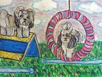 SHIH TZU Doing Agility Collectible 8x10 Dog Pop Art Print Signed by Artist KSAMS