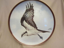 Osprey collector plate C. Ford Riley Majestic Birds of Prey #8