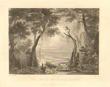 Dismal Swamp, Chesapeake, Suffolk, VA. Lake Drummond, 1873 Antique Art Print,
