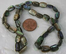 """India 100% Natural Multi-Color Abalone Shell Pearl Beads Strand 18"""""""