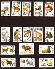 OMAN Les animaux sauvages, les felins,divers:chat,lapin,mouflon,bison   291T6