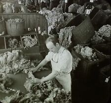 Sorting Wool, Lawrence, Massachusetts, Glass Magic Lantern Slide