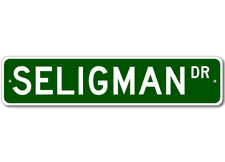 SELIGMAN Street Sign - Personalized Last Name Signs