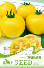 1 Pack 20 Fruit Seeds Yellow Pearl Tomato Healthy Vegetable Seeds Plant C093