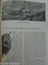 Siemens Pig Iron Steel Works South Wales Landore Swansea Sforzas Article 1884