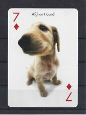One Single Dog Optical Art Photo Playing Card Afghan Hound Puppy Artlist