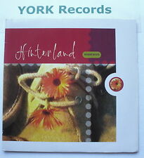 """HINTERLAND - Desert Boots - Excellent Condition 7"""" Single Island IS 463"""