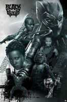 BLACK PANTHER MOVIE - CHARACTER COLLAGE POSTER - 22x34 - 16236