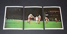 229-230-231 1979 MÖNCHENGLADBACH-BELGRADE FOOTBALL BENJAMIN EUROPE 1980 PANINI