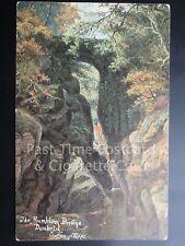 c1905 Perth: Dunkeld, The Rumbling Bridge, by E. Longstaffe - PMK 'SNODLAND' SQC
