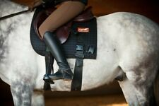 Genuine Equiband System from Equicore Concepts LLC (size Large)