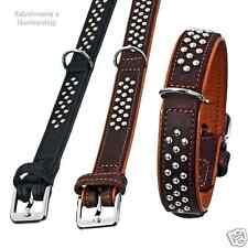 Karlie Rondo Halsband schwarz 22 Mm X 37 Cm M.ziernieten Genäht