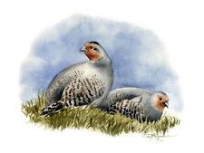 GRAY PARTRIDGE Painting BIRD ART 13 X 17 Signed DJR