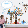 Animal Owls Wall Sticker Monkey Jungle Zoo Tree Nursery Baby Room Decal Mural