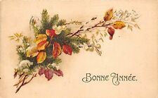 B39261 Nouvel anne Bonne Anne Happy new Year france