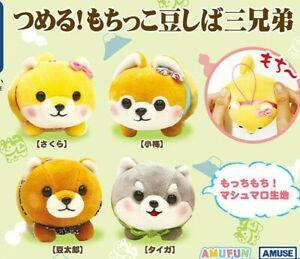 Amuse Mochikko Mameshiba San Kyodai Shiba Inu Dog Mochi Soft Plush Charm Japan