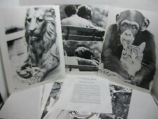 "Pictures without Titles Series IV 14""x11"" Photo Aids Teacher's Guide Set of 10"