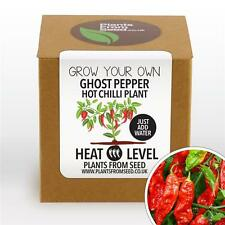 Plants From Seed - Grow Your Own Ghost Pepper Chilli Plant Kit