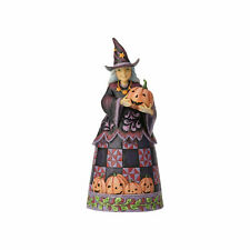 Jim Shore Heartwood Creek 'Best Witches This Halloween' Halloween Witch 6001547