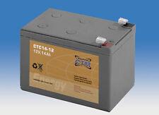 12V 14Ah CTM GEL-Batterie (VRLA)