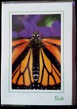 """E74) Carte """"Papillon"""" + enveloppe - Neuf"""