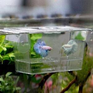 Aquarium Fish-Tank Guppy Double Breeding Breeder Rearing Trap Hatching Box Case