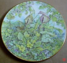 China Plate Royal Grafton 1992 Honey with Cert Man/'s Best Friend Collection