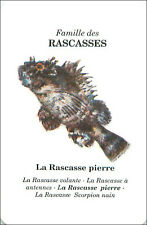 PLAYING CARD CARTE A JOUER Poisson-pierre Synanceia verrucosa Reef stonefish