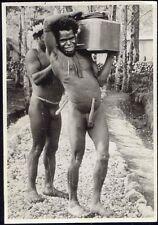 Dutch New Guinea Native Papua Males, Koteka (1940s) RP