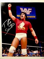 Tito Santana autographed PHOTO 8x10 Signed WCW WWE TNA ECW Hof