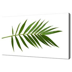 PALM TREE LEAF GREEN BOTANICAL CANVAS PRINT WALL ART PICTURE READY TO HANG