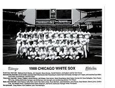 1988 CHICAGO WHITE SOX TEAM 8X10  PHOTO  MCDOWELL  FISK  BASEBALL HOF USA