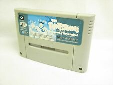 THE FLINTSTONES Treasure of Sierra Madrock Super Famicom Cartridge Only sfc
