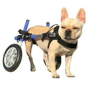 Dog Wheelchair - For Small Dogs 11-25lbs - By Walkin' Wheels