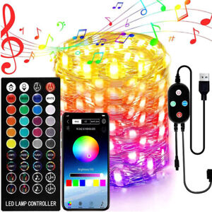 LED Fairy String Light Copper Wire USB RGB Bluetooth Music Lamp Christmas Home
