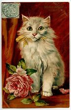 ILLUSTRATEUR MAURICE BOULANGER . ROSE CHAT CHATS CAT CATS KATZE .