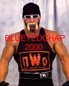 HULK HOGAN WRESTLER 8 X 10 WRESTLING PHOTO WWF WCW