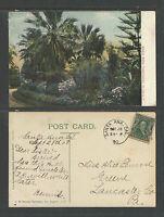 1908 A TYPICAL CALIFORNIA PARK SCENE POSTCARD