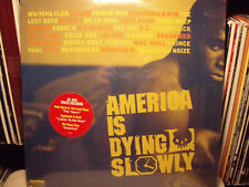 AMERICA IS DYING SLOWLY (A.I.D.S.) (VINYL 2LP)  1996  RARE  WU-TANG + PETE ROCK
