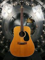 Dorado Model 5990 Acoustic Guitar