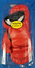 Youth Boxing Everlast Youth Boxing Gloves (Red, Small) Used Once, In Clear Box
