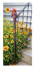 "15 ""Gretchen's Doorstep"" Cardinal 14x30 Canvas Print by Robert Metropulos"
