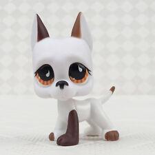 #750 Rare Littlest Pet Shop Brown White Great Dane Dog Brown Eyes Puppy LPS Toy