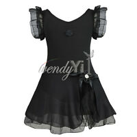 Kid Girl Leotard Dress Ballet/Dance/Gymnastic Tutu Skirt Dancewear Costume 2-12Y