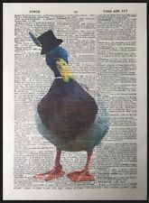 Duck Vintage Dictionary Page Wall Art Picture Print Animal Bird Funny Quirky
